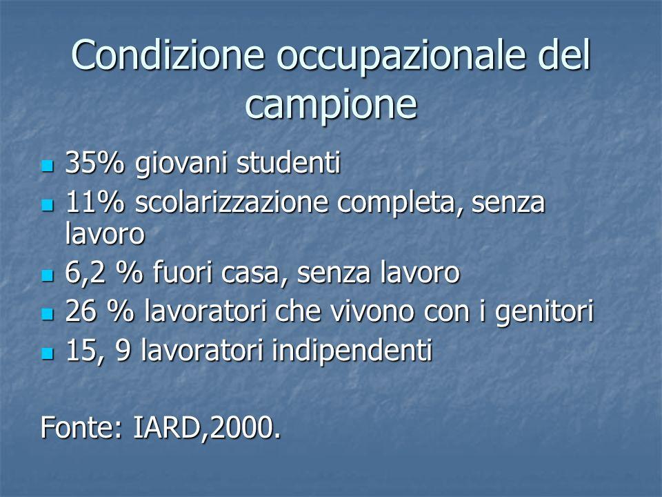 Condizione occupazionale del campione 35% giovani studenti 35% giovani studenti 11% scolarizzazione completa, senza lavoro 11% scolarizzazione complet