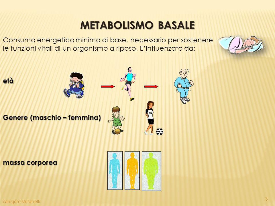Consumo energetico minimo di base, necessario per sostenere le funzioni vitali di un organismo a riposo. Einfluenzato da: età Genere (maschio – femmin