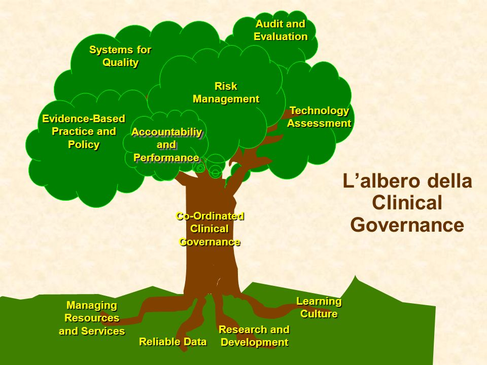 Lalbero della Clinical Governance Audit and Evaluation Research and Development Research and Development Evidence-Based Practice and Policy Evidence-B