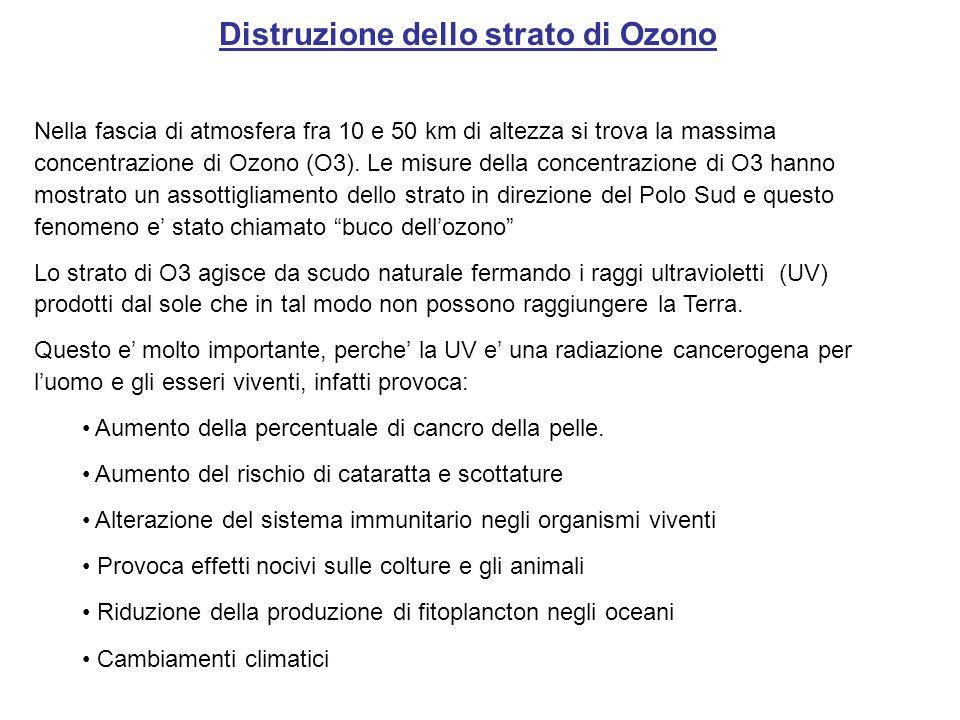Distruzione dello strato di Ozono Nella fascia di atmosfera fra 10 e 50 km di altezza si trova la massima concentrazione di Ozono (O3). Le misure dell
