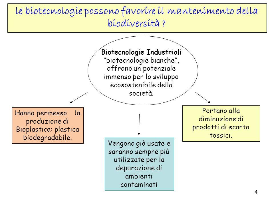 4 Biotecnologie Industriali biotecnologie bianche, offrono un potenziale immenso per lo sviluppo ecosostenibile della società. Portano alla diminuzion