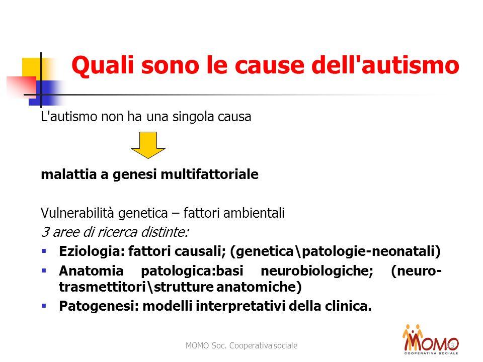 MOMO Soc. Cooperativa sociale 13 Quali sono le cause dell'autismo L'autismo non ha una singola causa malattia a genesi multifattoriale Vulnerabilità g