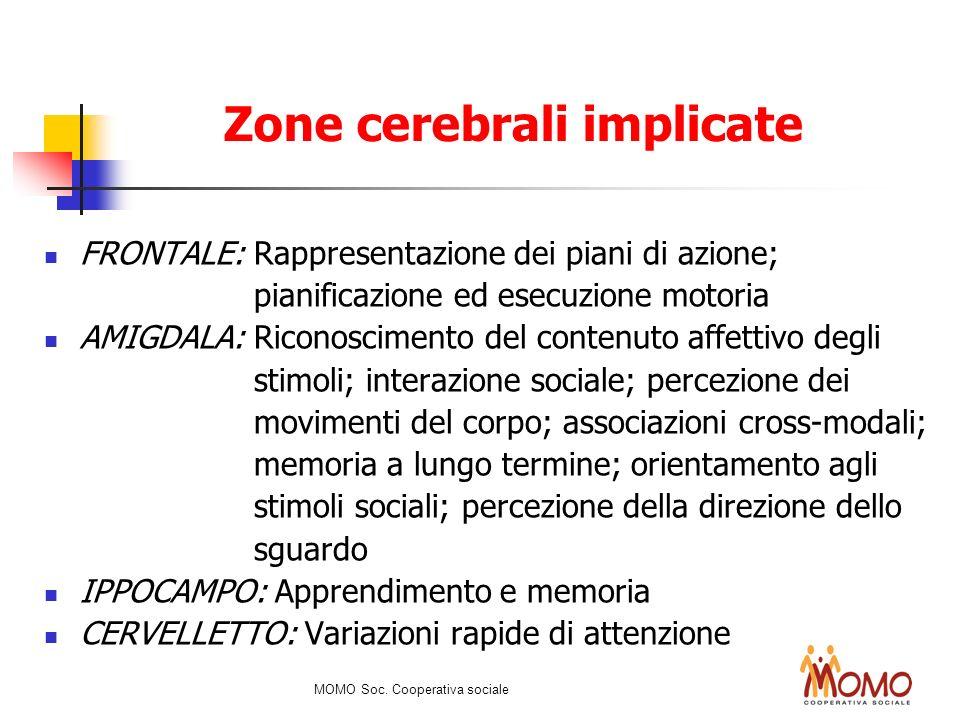 FRONTALE: Rappresentazione dei piani di azione; pianificazione ed esecuzione motoria AMIGDALA: Riconoscimento del contenuto affettivo degli stimoli; i
