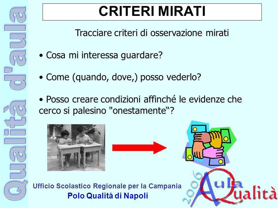 Ufficio Scolastico Regionale per la Campania Polo Qualità di Napoli CRITERI MIRATI Tracciare criteri di osservazione mirati Cosa mi interessa guardare