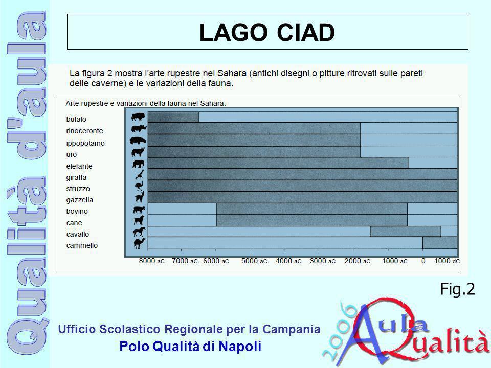 Ufficio Scolastico Regionale per la Campania Polo Qualità di Napoli LAGO CIAD Fig.2
