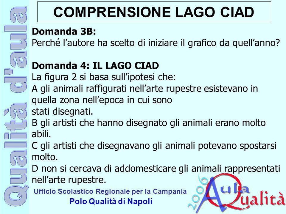 Ufficio Scolastico Regionale per la Campania Polo Qualità di Napoli COMPRENSIONE LAGO CIAD Domanda 3B: Perché lautore ha scelto di iniziare il grafico