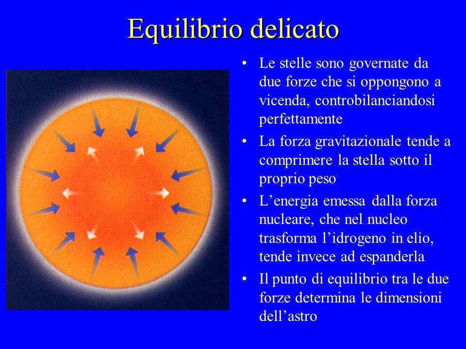 Equilibrio delicato Le stelle sono governate da due forze che si oppongono a vicenda, controbilanciandosi perfettamente La forza gravitazionale tende