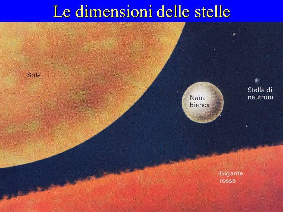 Le dimensioni delle stelle Il punto di equilibrio tra gravitazione e reazioni nucleari può essere raggiunto a diversi livelli, in relazione alla massa