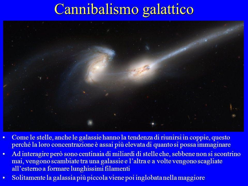 Cannibalismo galattico Come le stelle, anche le galassie hanno la tendenza di riunirsi in coppie, questo perché la loro concentrazione è assai più ele