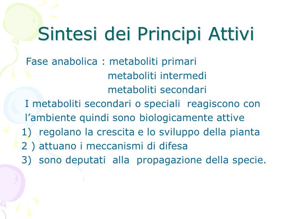 Sintesi dei Principi Attivi Fase anabolica : metaboliti primari metaboliti intermedi metaboliti secondari I metaboliti secondari o speciali reagiscono