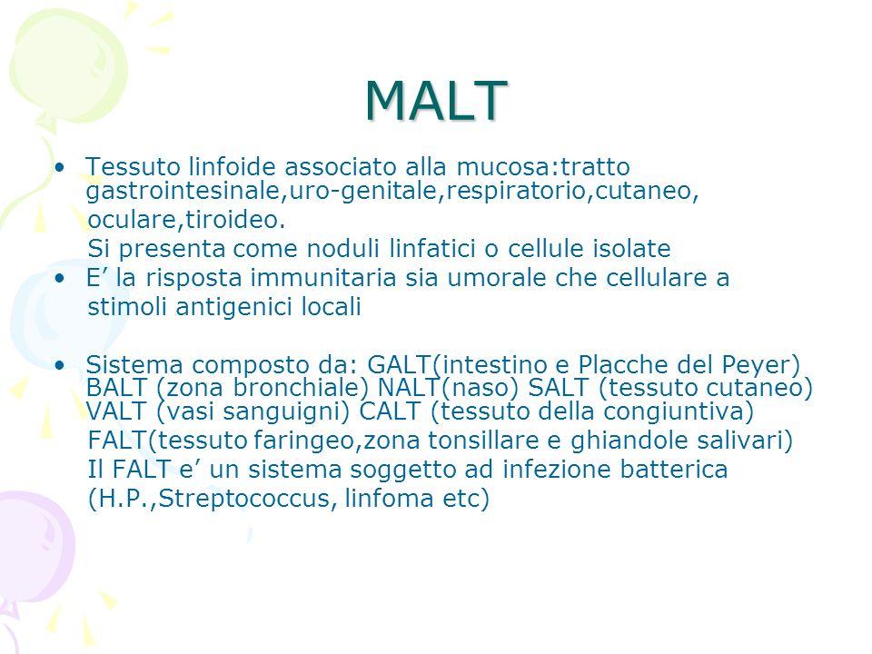 MALT Tessuto linfoide associato alla mucosa:tratto gastrointesinale,uro-genitale,respiratorio,cutaneo, oculare,tiroideo. Si presenta come noduli linfa
