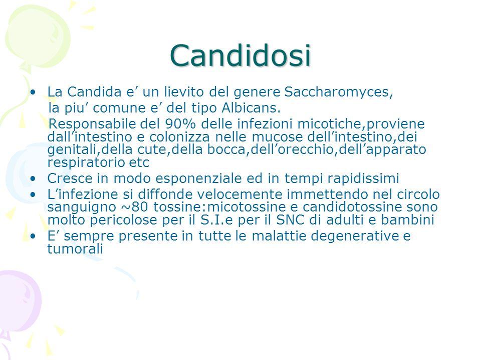 Candidosi La Candida e un lievito del genere Saccharomyces, la piu comune e del tipo Albicans. Responsabile del 90% delle infezioni micotiche,proviene