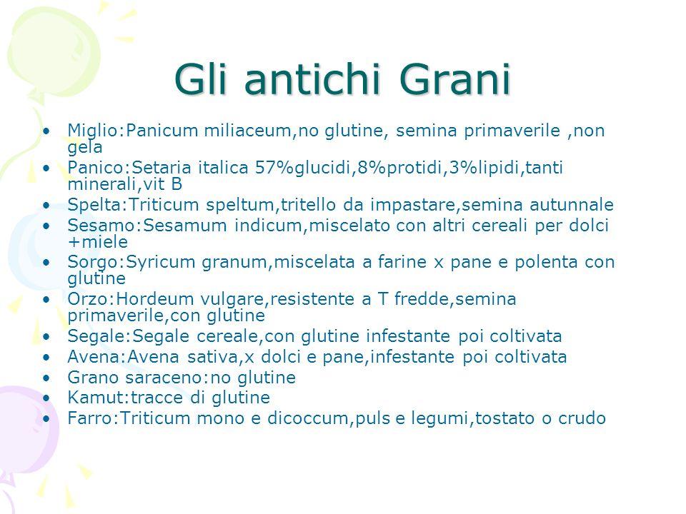 Gli antichi Grani Miglio:Panicum miliaceum,no glutine, semina primaverile,non gela Panico:Setaria italica 57%glucidi,8%protidi,3%lipidi,tanti minerali
