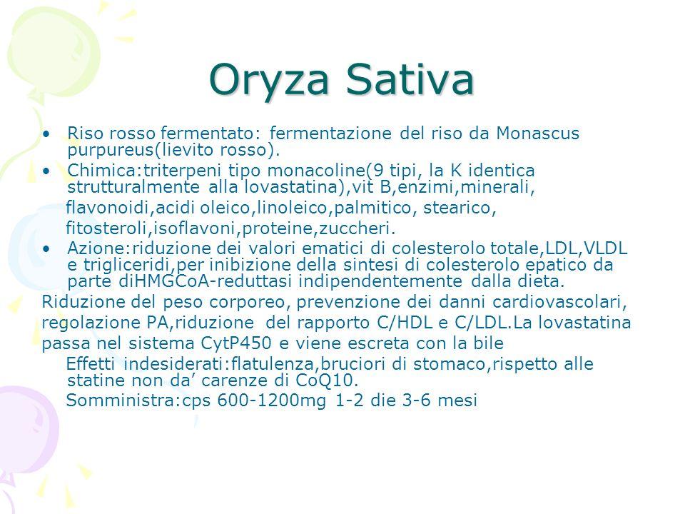 Oryza Sativa Riso rosso fermentato: fermentazione del riso da Monascus purpureus(lievito rosso). Chimica:triterpeni tipo monacoline(9 tipi, la K ident