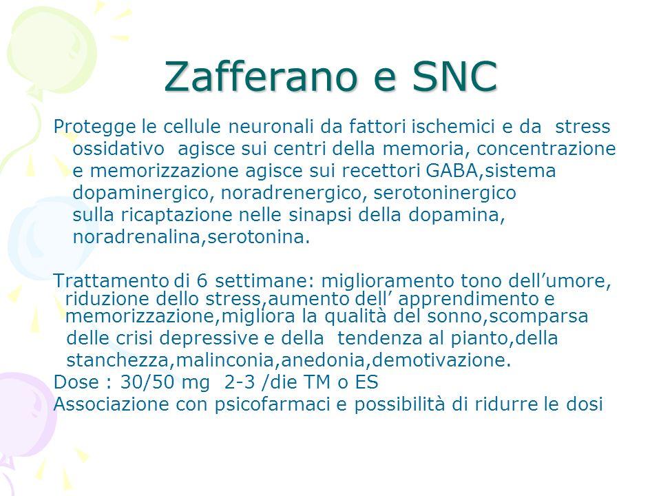 Zafferano e SNC Protegge le cellule neuronali da fattori ischemici e da stress ossidativo agisce sui centri della memoria, concentrazione e memorizzaz