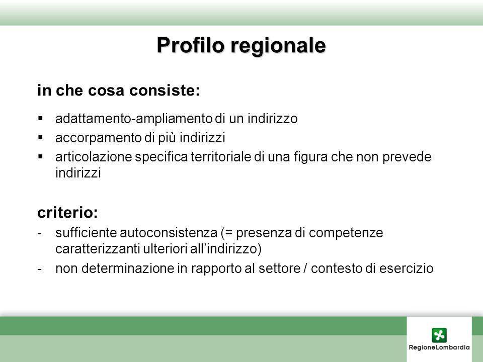 Profilo regionale in che cosa consiste: adattamento-ampliamento di un indirizzo accorpamento di più indirizzi articolazione specifica territoriale di