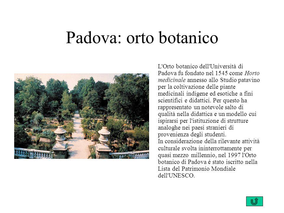 Padova: orto botanico L Orto botanico dell Università di Padova fu fondato nel 1545 come Horto medicinale annesso allo Studio patavino per la coltivazione delle piante medicinali indigene ed esotiche a fini scientifici e didattici.
