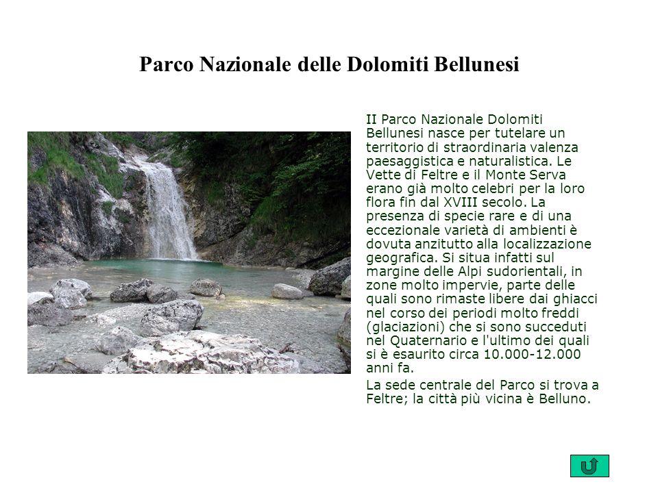 Parco Nazionale delle Dolomiti Bellunesi II Parco Nazionale Dolomiti Bellunesi nasce per tutelare un territorio di straordinaria valenza paesaggistica e naturalistica.
