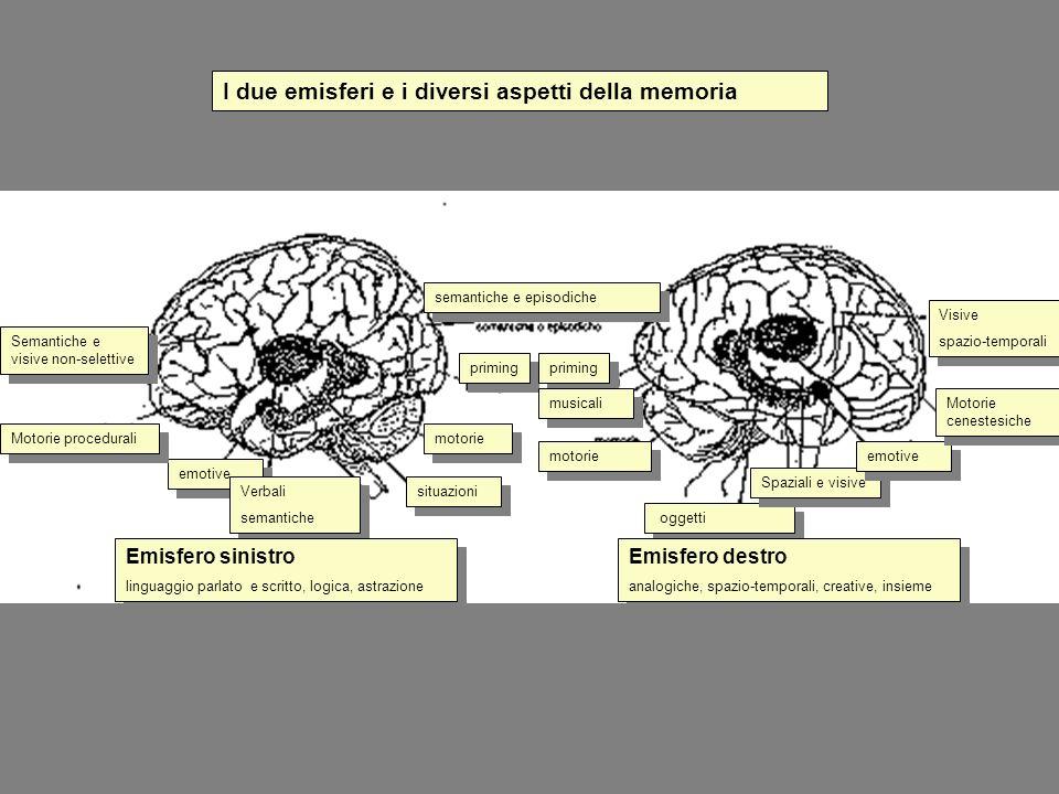 semantiche e episodiche priming musicali motorie oggetti Spaziali e visive emotive Motorie cenestesiche Visive spazio-temporali Visive spazio-temporal