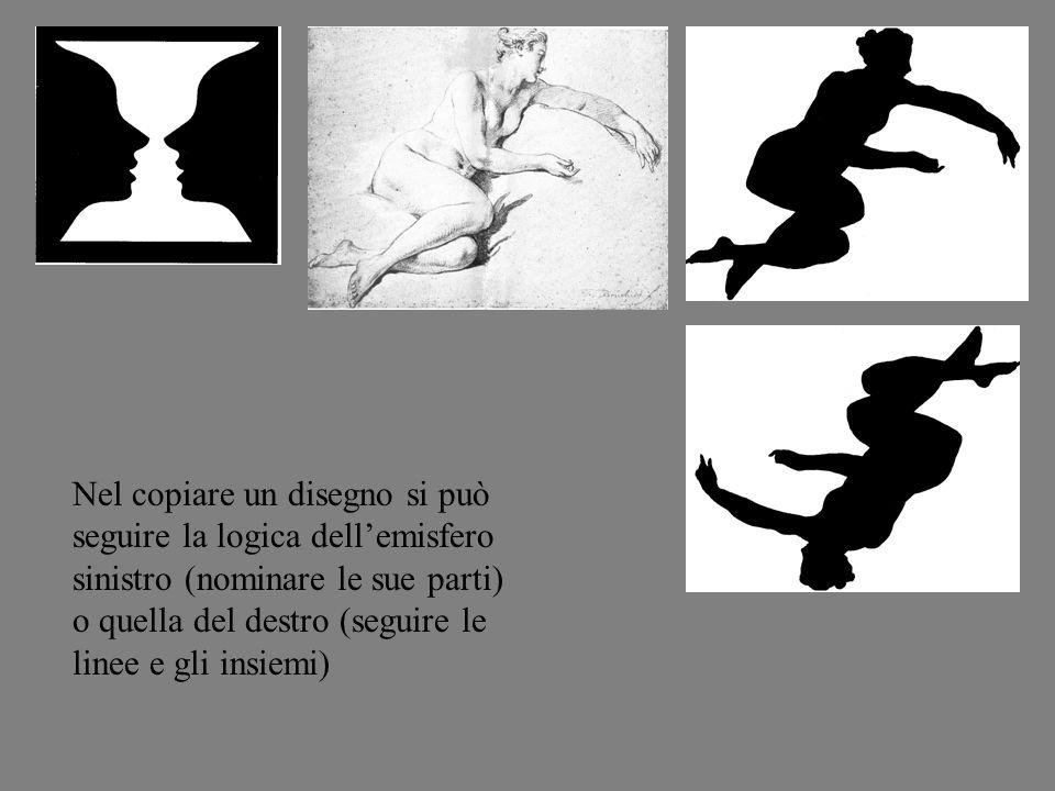 Nel copiare un disegno si può seguire la logica dellemisfero sinistro (nominare le sue parti) o quella del destro (seguire le linee e gli insiemi)