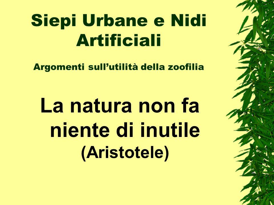 La natura non fa niente di inutile (Aristotele)