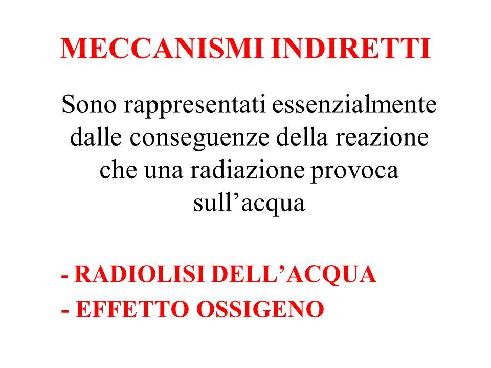MECCANISMI INDIRETTI Sono rappresentati essenzialmente dalle conseguenze della reazione che una radiazione provoca sullacqua - RADIOLISI DELLACQUA - E