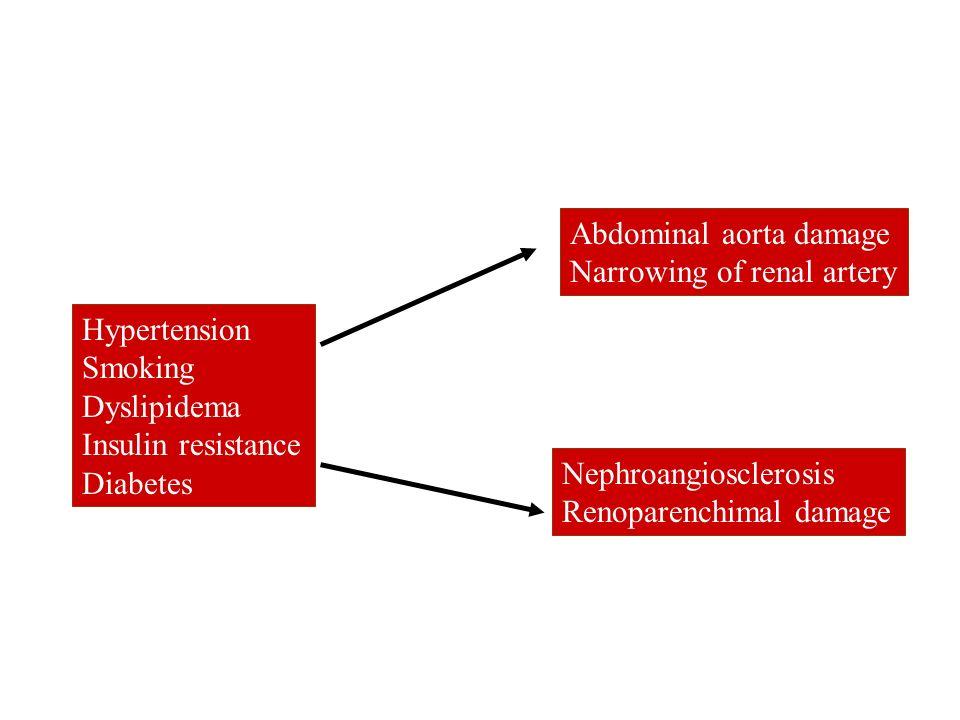 Hypertension Smoking Dyslipidema Insulin resistance Diabetes Abdominal aorta damage Narrowing of renal artery Nephroangiosclerosis Renoparenchimal dam
