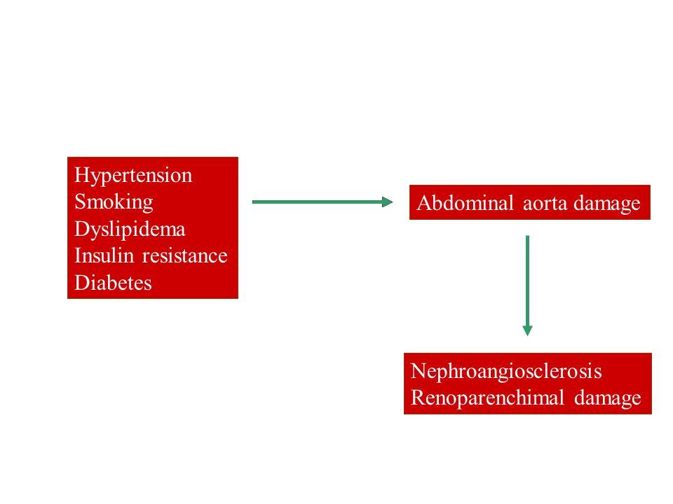 Hypertension Smoking Dyslipidema Insulin resistance Diabetes Nephroangiosclerosis Renoparenchimal damage Hypertension Smoking Dyslipidema Insulin resi