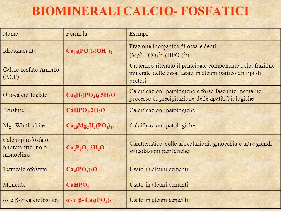 BIOMINERALI CALCIO- FOSFATICI NomeFormulaEsempi IdrossiapatiteCa 10 (PO 4 ) 6 (OH ) 2 Frazione inorganica di ossa e denti (Mg 2+, CO 3 2-, (HPO 4 ) 2-