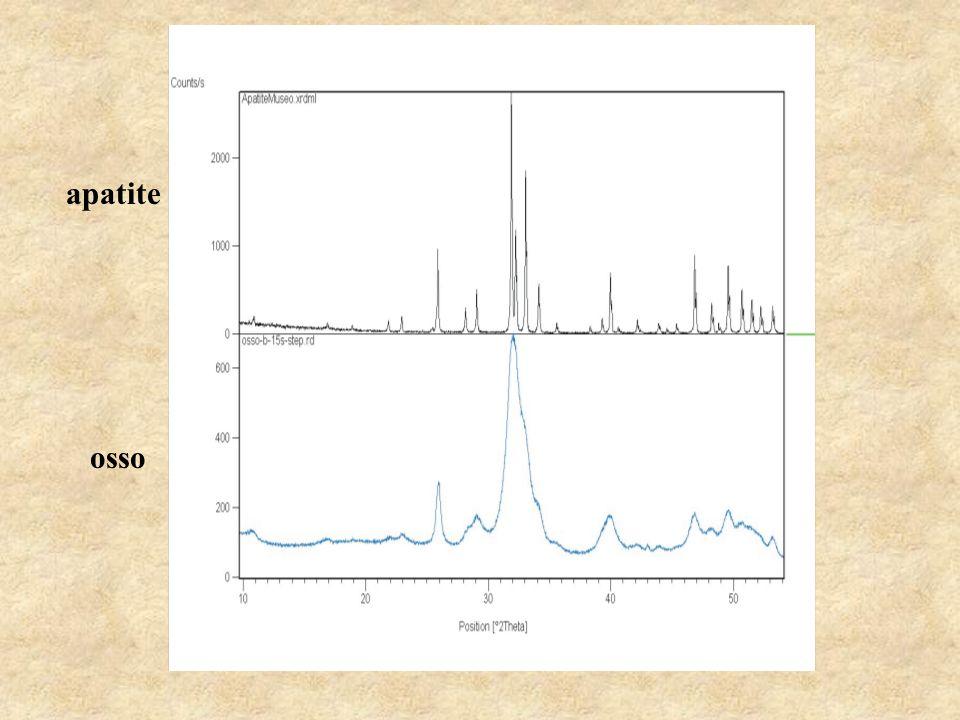BIOAPATITI Le principali differenze tra il minerale apatite s.s.