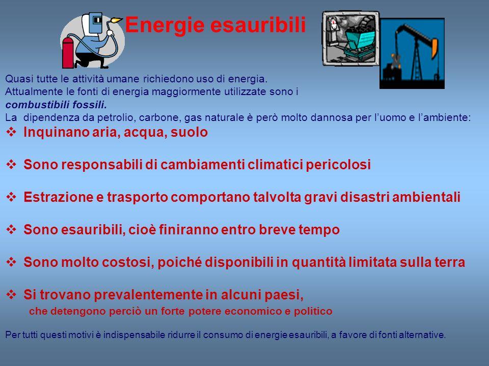 Energie esauribili Quasi tutte le attività umane richiedono uso di energia. Attualmente le fonti di energia maggiormente utilizzate sono i combustibil