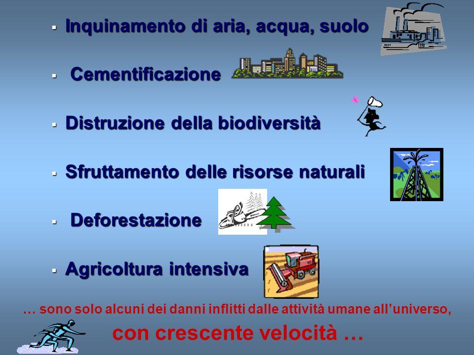 Inquinamento di aria, acqua, suolo Inquinamento di aria, acqua, suolo Cementificazione Cementificazione Distruzione della biodiversità Distruzione del
