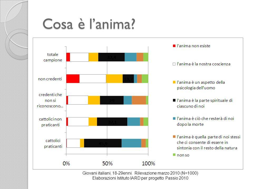 Cosa è lanima? Giovani italiani, 18-29enni. Rilevazione marzo 2010 (N=1000) Elaborazioni Istituto IARD per progetto Passio 2010