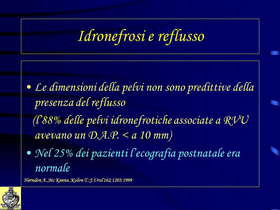 Idronefrosi e reflusso Le dimensioni della pelvi non sono predittive della presenza del reflusso (l88% delle pelvi idronefrotiche associate a RVU avev