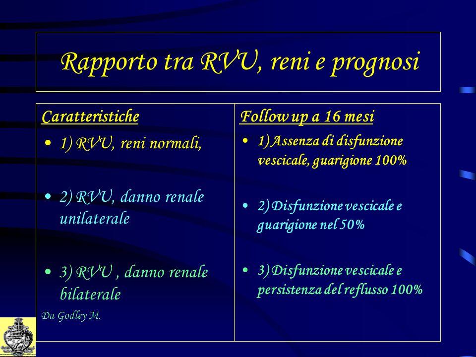 Rapporto tra RVU, reni e prognosi Caratteristiche 1) RVU, reni normali, 2) RVU, danno renale unilaterale 3) RVU, danno renale bilaterale Da Godley M.