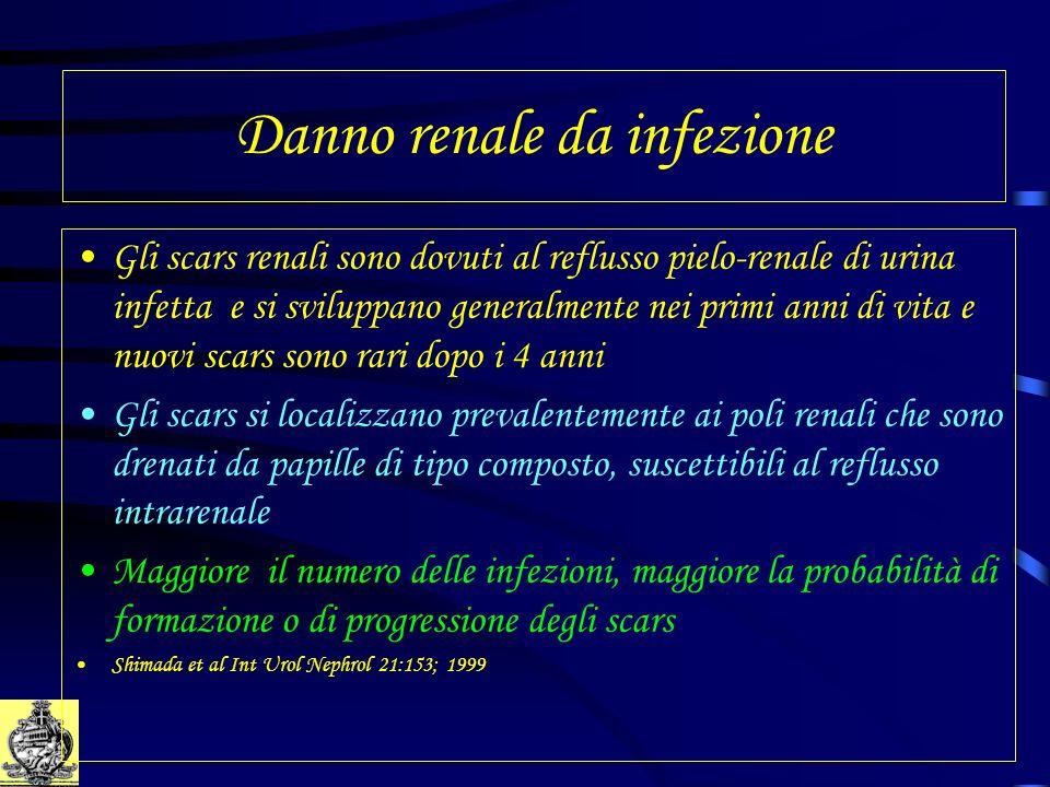 Danno renale da infezione Gli scars renali sono dovuti al reflusso pielo-renale di urina infetta e si sviluppano generalmente nei primi anni di vita e