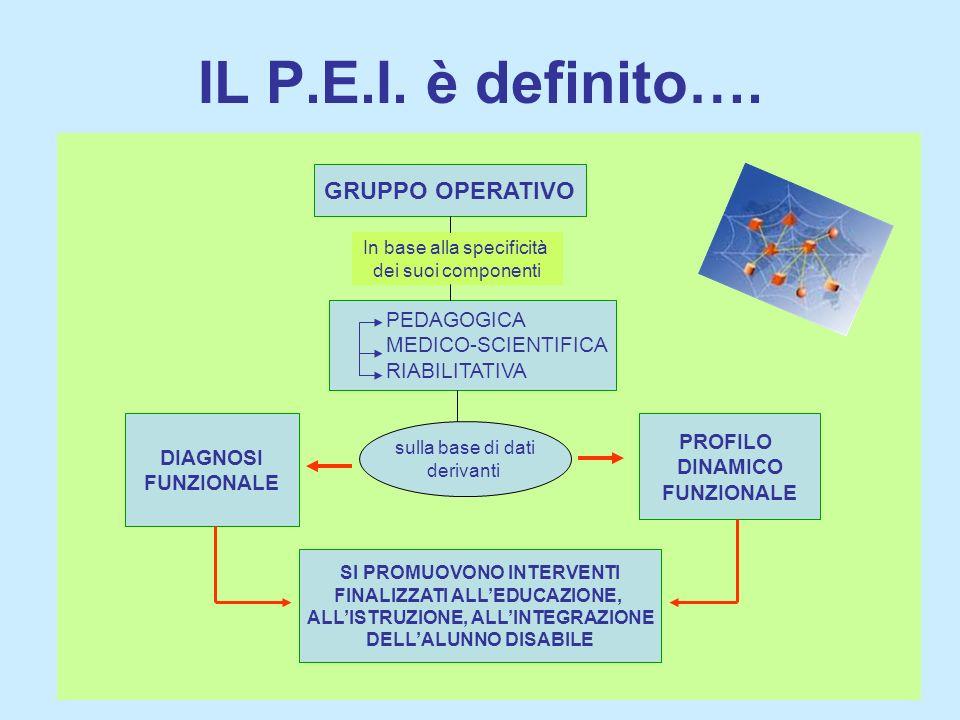 IL P.E.I. è definito…. GRUPPO OPERATIVO PEDAGOGICA MEDICO-SCIENTIFICA RIABILITATIVA In base alla specificità dei suoi componenti sulla base di dati de