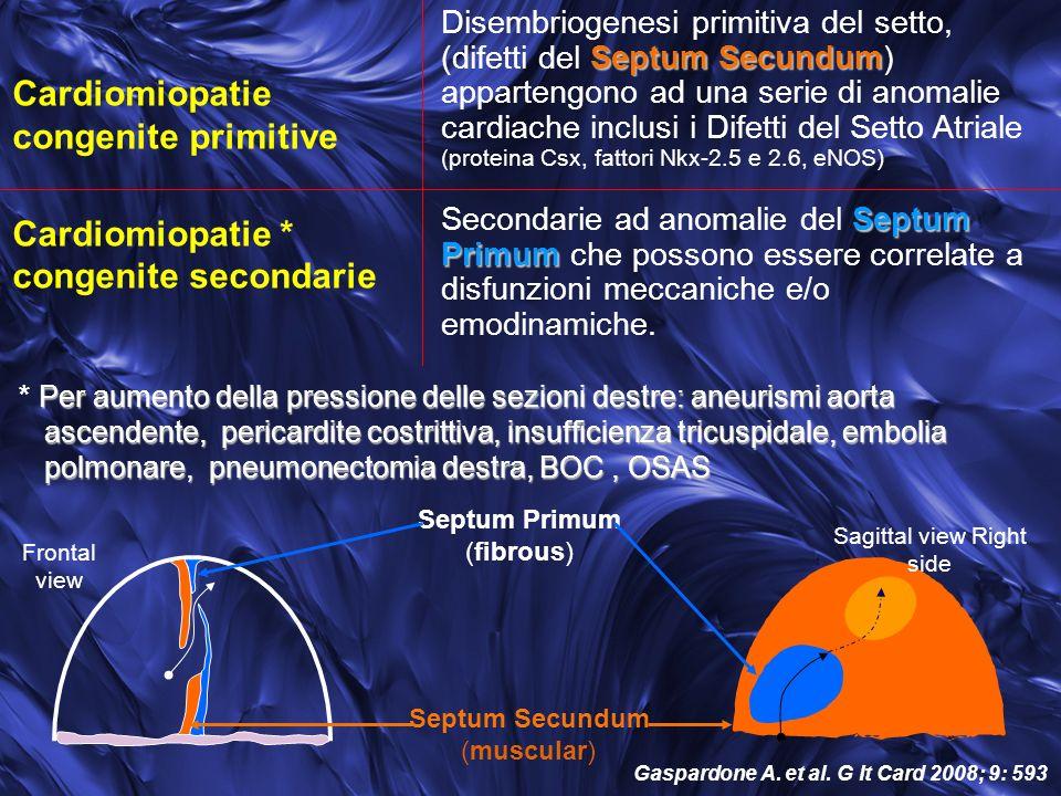 Cardiomiopatie congenite primitive Cardiomiopatie * congenite secondarie Per aumento della pressione delle sezioni destre: aneurismi aorta * Per aumento della pressione delle sezioni destre: aneurismi aorta ascendente, pericardite costrittiva, insufficienza tricuspidale, embolia ascendente, pericardite costrittiva, insufficienza tricuspidale, embolia polmonare, pneumonectomia destra, BOC, OSAS polmonare, pneumonectomia destra, BOC, OSAS Septum Secundum Disembriogenesi primitiva del setto, (difetti del Septum Secundum) appartengono ad una serie di anomalie cardiache inclusi i Difetti del Setto Atriale (proteina Csx, fattori Nkx-2.5 e 2.6, eNOS) Septum Primum Secondarie ad anomalie del Septum Primum che possono essere correlate a disfunzioni meccaniche e/o emodinamiche.