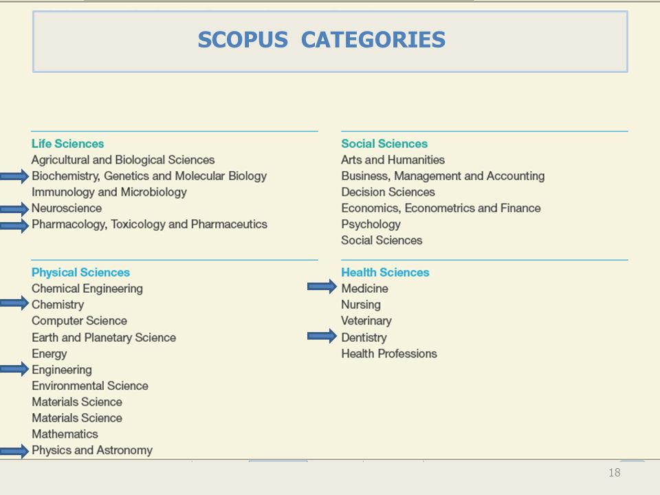 SCOPUS CATEGORIES 18