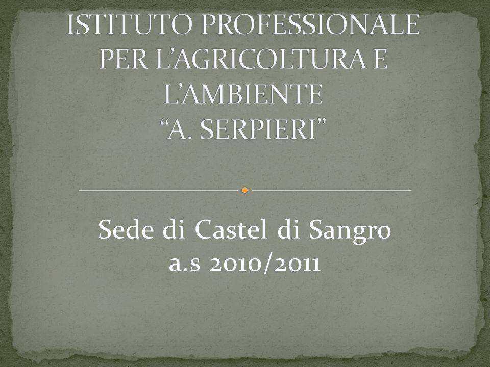 Sede di Castel di Sangro a.s 2010/2o11