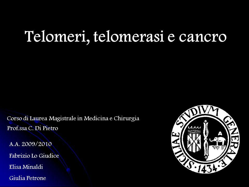 Telomeri, telomerasi e cancro Corso di Laurea Magistrale in Medicina e Chirurgia A.A. 2009/2010 Fabrizio Lo Giudice Elisa Minaldi Giulia Petrone Prof.