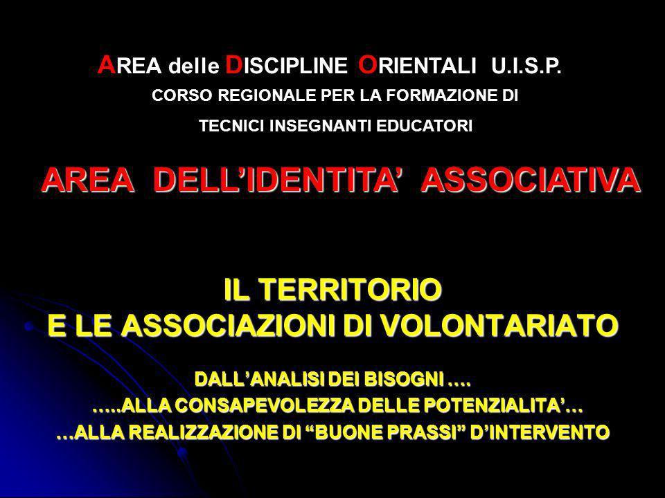 IL TERRITORIO E LE ASSOCIAZIONI DI VOLONTARIATO DALLANALISI DEI BISOGNI ….