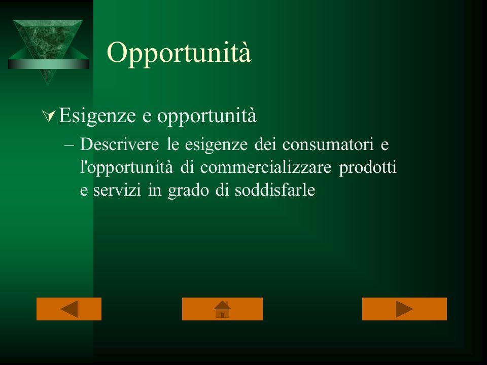 Opportunità Esigenze e opportunità –Descrivere le esigenze dei consumatori e l'opportunità di commercializzare prodotti e servizi in grado di soddisfa