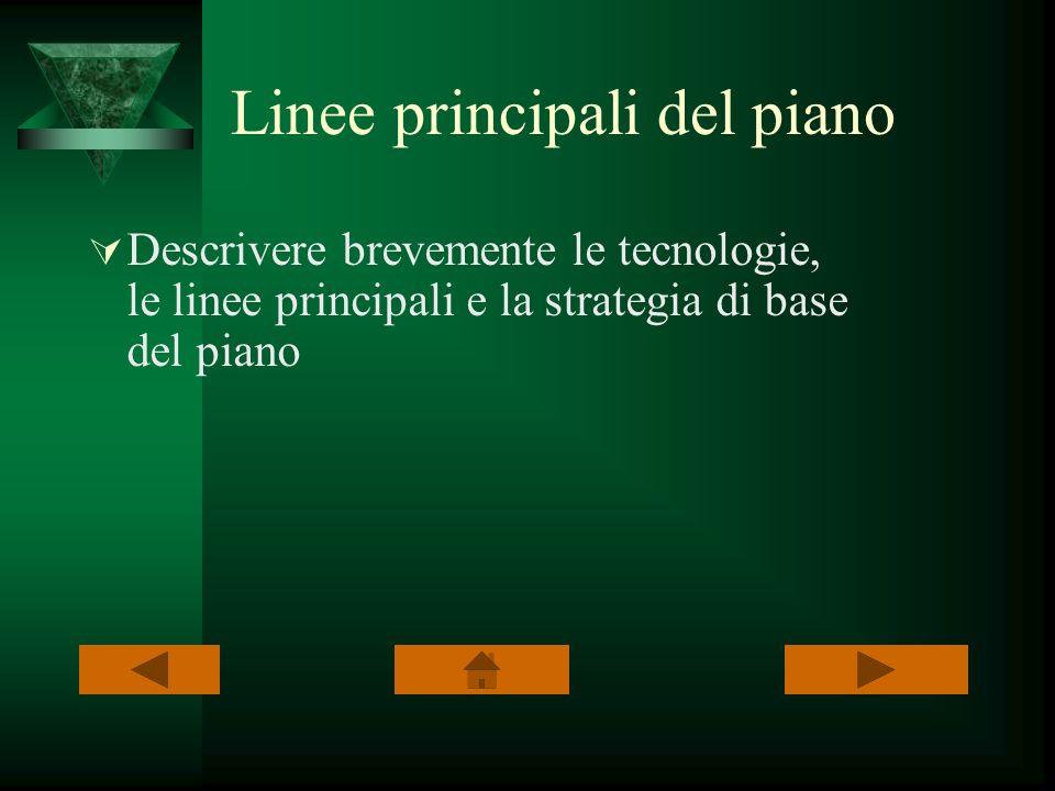 Linee principali del piano Descrivere brevemente le tecnologie, le linee principali e la strategia di base del piano