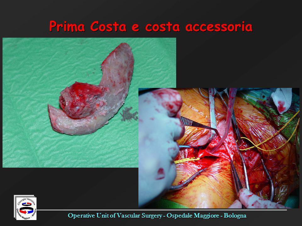 Operative Unit of Vascular Surgery - Ospedale Maggiore - Bologna Prima Costa e costa accessoria