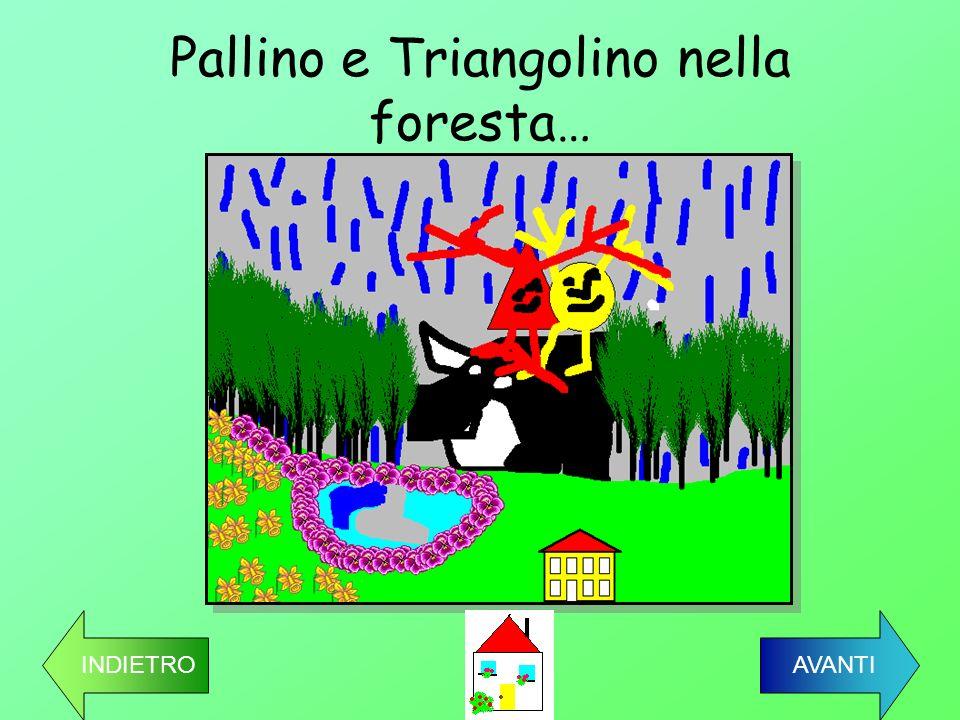 Pallino e Triangolino nella foresta… INDIETRO AVANTI