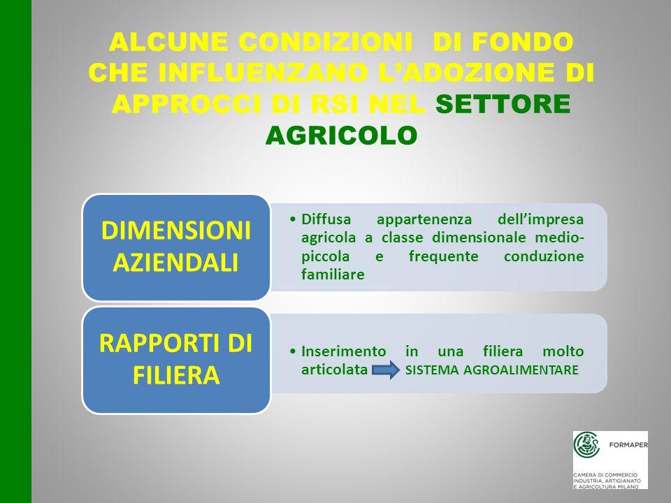 ALCUNE CONDIZIONI DI FONDO CHE INFLUENZANO LADOZIONE DI APPROCCI DI RSI NEL SETTORE AGRICOLO Diffusa appartenenza dellimpresa agricola a classe dimens