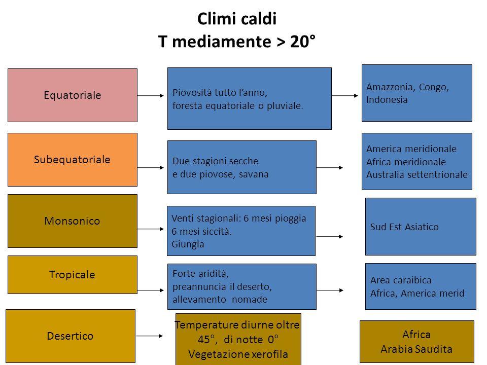 Climi caldi T mediamente > 20° Subequatoriale Equatoriale Monsonico Tropicale Piovosità tutto lanno, foresta equatoriale o pluviale. Due stagioni secc