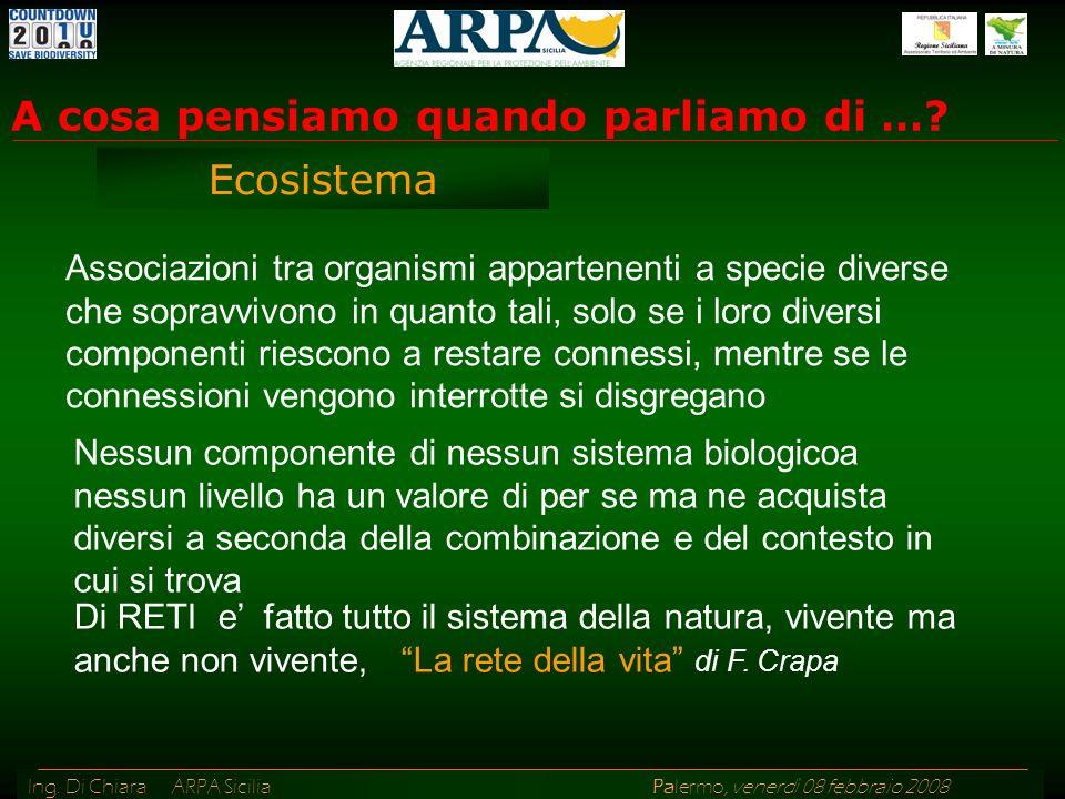 Ing.Di Chiara ARPA Sicilia Palermo, venerdì 08 febbraio 2008 A cosa pensiamo quando parliamo di ….