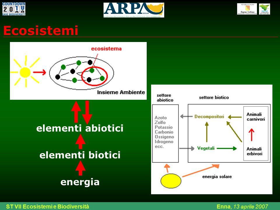 Ing. Di Chiara ARPA Sicilia Palermo, venerdì 08 febbraio 2008 elementi abiotici elementi biotici energia Ecosistemi ST VII Ecosistemi e Biodiversità E